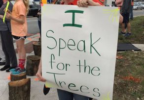Protestors decry removal of trees at controversial Towson site